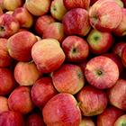 jablcka